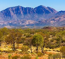 Albert Namatjira Country - NT by Hans Kawitzki