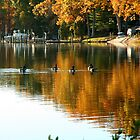 Geese on Hellen's Creek by Eileen McVey