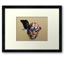 Winged Bird Mask Framed Print