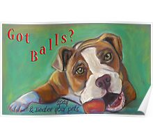 Bulldog - Spay/Neuter Poster