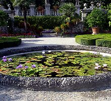 Gardens of Isola Bella by sstarlightss