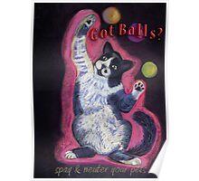 Juggling Cat - Spay/Neuter Poster