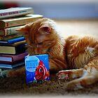 Scholastic Kitty by AngieBanta