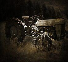 Old Massey Ferguson by Josie Jackson