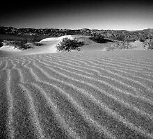 Mini Dunes by BodieBailey