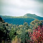 Picnic at Hanging Rock by AuroraPhoto