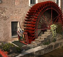 Watermill by annalisa bianchetti