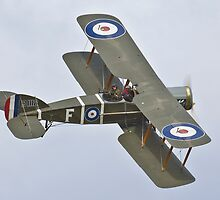Bristol Fighter at Omaka by Barry Culling