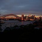 Golden Sydney Sunset by Anthony Ogle