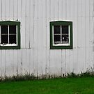 Green Barn Window by Sandra Guzman