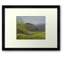 Ford's Pond in Spring Framed Print