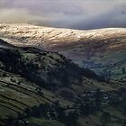 Upper Swaledale by Guy Carpenter