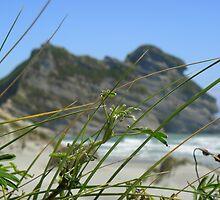 Rocks in the Surf, Wharariki Beach by MerishaLucinde