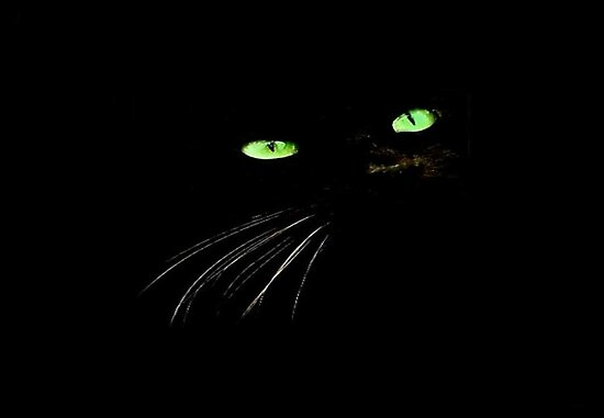 SPOOKY GREEN EYES~  by RoseMarie747