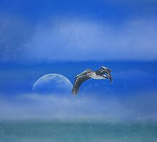As i soar freely on a tail wind by TheBrit