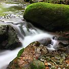 Rancina Stream by jimmylu