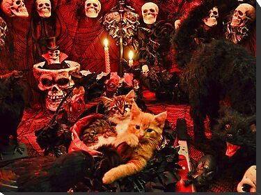Goth Kittens