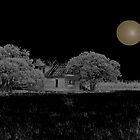 The House and The Moon by Zi-O