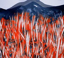red grass... dark peak by banrai