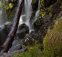 Hidden Creek Falls- close and personal by Kylie  Sheahen