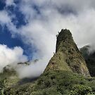 Iao Needle - West Maui Hawaii by djphoto