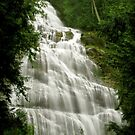 Bridal Veil Falls in Agassiz, BC, Canada by Tracy Friesen
