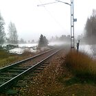 """Misty Railway "" by Gabriella Nilsson"