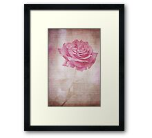 Rose Garden Dreams Framed Print