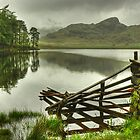 Blea Tarn.....The Fence In May by Jamie  Green