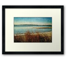 Searching For Clarity Framed Print