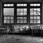 Roommates, Abandoned Hospital New England by MicheleDAmicol
