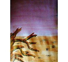 Life in the desert, watercolor Photographic Print