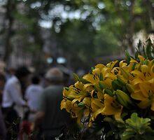 La Rambla in Yellow by Hilda Rytteke