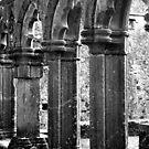Fore Abbey Ruins Close up by Martina Fagan