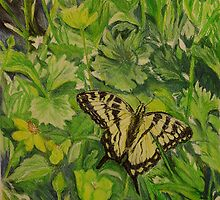 Swallowtail in Wood Poppies by Lynda Earley