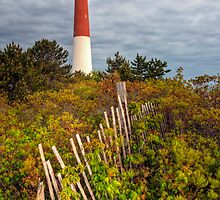 Barnegat Lighthouse by Michael Mill