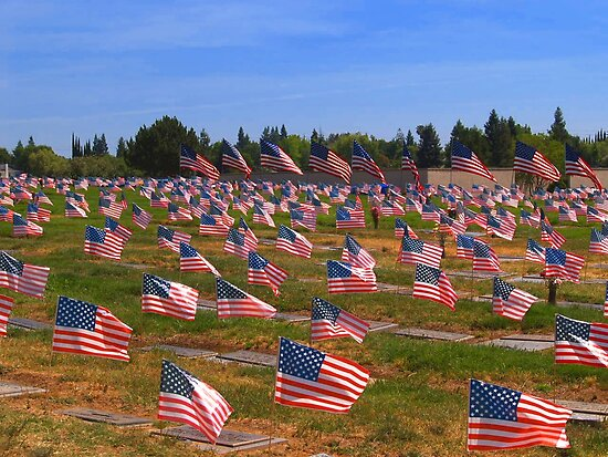 Memorial Day Flags by the57man