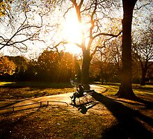 autumn in st stephens green  by Brian  Dwyer