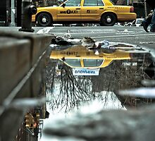 Cab Reflections by Steve Edwards
