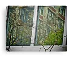Reflections Behind The Branches - Portland - Oregon Canvas Print