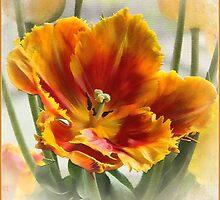 One More Tulip by Brenda Boisvert