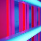 A Closer Look at Dan Flavin by Francesca Wilkins