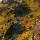 Trotternish Ridge (3) by Karl Williams