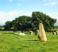 Long Meg's Brood by trobe