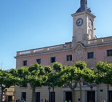 City Hall, Cervantes Plaza, Alcala de Henares, Madrid, Spain by MONIGABI