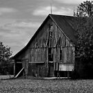 Barn in Black and White by Sheryl Gerhard