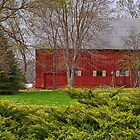 Barn Surrounded by Evergreens by Sheryl Gerhard