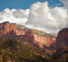 Kolob Canyon - Zion National Park by Aaron Minnick