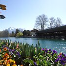 Thun city waterfront by fladelita