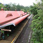 Kuranda Rail  by Scott Schrapel